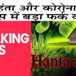 cause of hantavirus