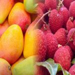 buy mango online in bihar